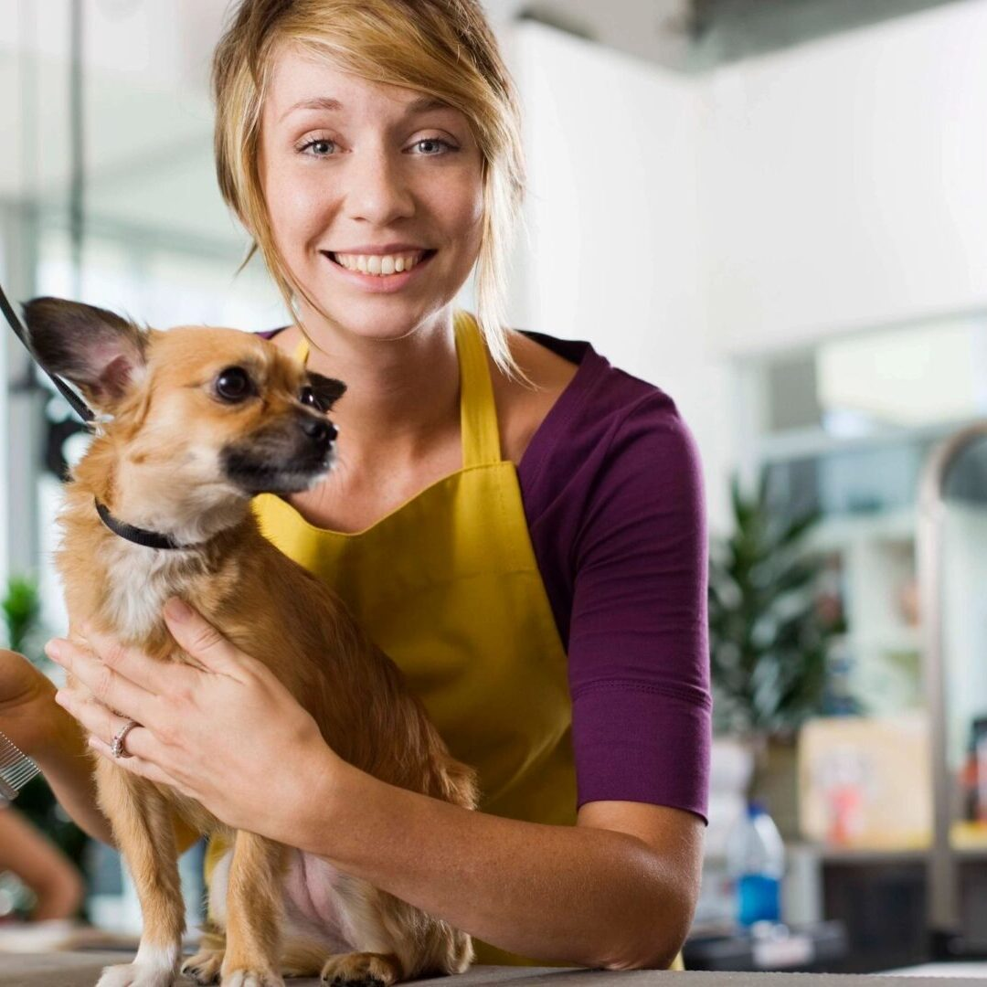 Pet Care (except Veterinary) Services